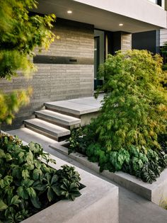 The Butterfly House by John Maniscalco Architecture in San Francisco, California is a complete rebuild of a mid-century modern home. Entryway Stairs, Exterior Stairs, House Stairs, House Columns, Entryway Ideas, House 2, Design Exterior, Modern Exterior, Entrance Design