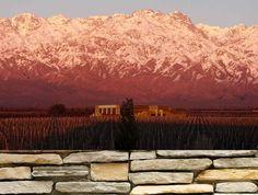 Bodega #Séptima (Agrelo, #Mendoza)