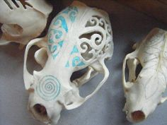 thoughts for my skull collection