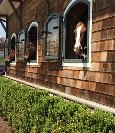 I love the arched windows! Shingle style barn. Such a magnificent horse stable…