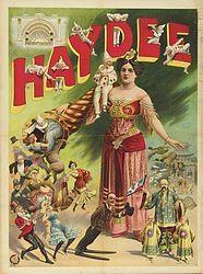 Haydee 1906 Vintage Magic & Circus Posters and Prints Vintage Circus Posters, Vintage Advertising Posters, Vintage Advertisements, Vintage Ads, Carnival Posters, Old Circus, Night Circus, Street Magic, Illustrations