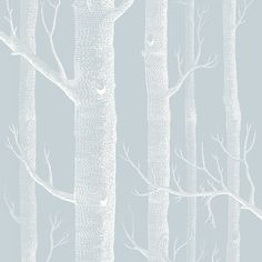 Woods Wallpaper by Cole and Son Whimsical range, enchanting woodland with silver birch trees, Powder Blue Grey And White Wallpaper, Cole And Son Wallpaper, Olive Green Wallpaper, Wood Wallpaper, Wallpaper Roll, Silver Birch Wallpaper, Playroom Wallpaper, Birch Tree Wallpaper, Bedroom Wallpaper