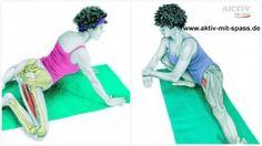 Dehnübungen sind ein wichtiger Bestandteil eines jeden Trainings. Richtig angewendet können sie uns vor Verletzungen schützen und die Muskeln für kommende Anstrengungen vorbereiten.