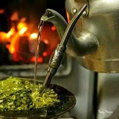 Phto by nanymayer<br> Rio Grande Do Sul, Cafe No Bule, Yerba Mate Tea, Different Types Of Tea, Chinese Greens, Pinterest App, Instagram Feed, Hospitality, Mexico