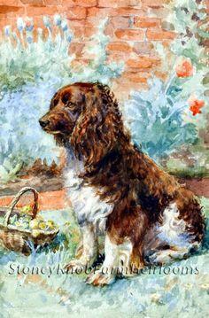 Spaniel in the Garden ~ Dogs, Flowers ~ Cross Stitch Pattern…