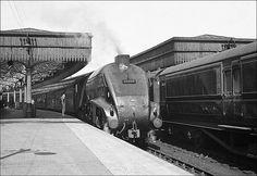 60009 Union of South Africa Diesel Locomotive, Steam Locomotive, Union Of South Africa, African Life, Flying Scotsman, Steam Railway, British Rail, Train Engines, Model Train Layouts