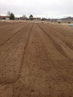 freshly tilled field - ready for plants Farm Life, Farmer, Country Roads, Plants, Flora, Plant
