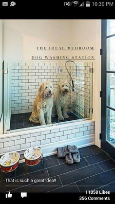 Decorating ideas making a pet friendly home pet door mudroom and dog washing station solutioingenieria Gallery