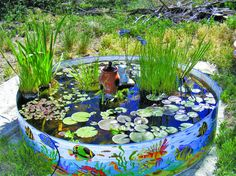 1000 images about 1 on pinterest oval bathroom mirror for Koi in paddling pool