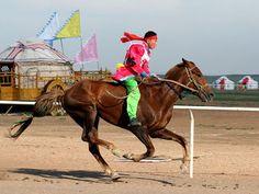 Mongolian: Mongolian horse