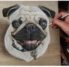 Incredible Photorealistic Drawings on Wooden Boards by Visual Artist Ivan Hoo 3d Drawings, Realistic Drawings, Pencil Drawings, Illusion Drawings, Hyperrealistic Drawing, Foto 3d, Hyper Realistic Paintings, Pug Art, How To Make Drawing