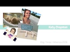 Kittens, Kites, Sunsets & Sand | Vlog Three, Naples, Port Charlotte & Fort Myers - YouTube