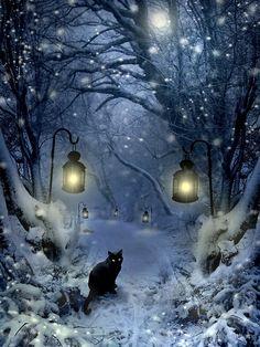 winter twilight von angie latham - The world's most private search engine Fantasy Landscape, Fantasy Art, Black Cat Art, Beautiful Moon, Christmas Images, Winter Scenes, Photos Du, Belle Photo, Twilight