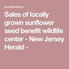 Sales of locally grown sunflower seed benefit wildlife center - New Jersey Herald -
