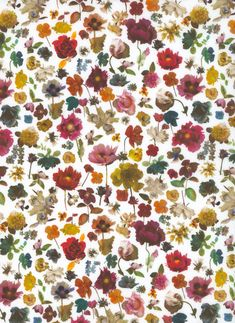 100% cotton Liberty Tana Lawn.    Approximately 137cm in width.     The Strawberry Thief, Liberty Art Fabrics, Yellow Pattern, Textile Design, Egyptian, Lawn, Art Gallery, Arts And Crafts, Floral