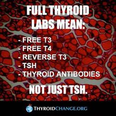 FULL thyroid labs NOT just your TSH!!