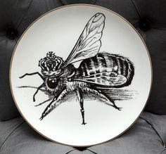 Rory Dobner's Queen Bee