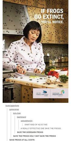 If frogs go extinct, you'll notice... / Si les grenouilles disparaissent, vous le remarquerez...