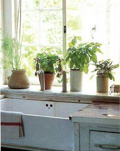Farmhouse style kitchen sink with fresh herbs