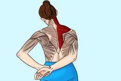 Чтобы снять напряжение в шее и плечах, делайте эти 11 упражнений Massage, Health Fitness, Sports, Hs Sports, Health And Wellness, Sport, Massage Therapy, Health And Fitness, Excercise
