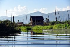 fisher village, with house on stilts Inle Lake, Myanmar. Asia. #photo #photographer #photography #getty #images #travel #traveler #inle #inlay #lake #nature #landscape #houseonstilts #colored #burma #asia #shan #village