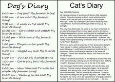 dogs diary/cats diary