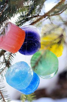 Ice ornaments for hanging outdoors- a fun Winter activity