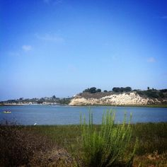 Take a hike! Along the Back Bay, that is. You'll be happy you did. #NewportBeach