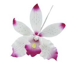 Brassavolaelio Orchid, White with Pink, 9 Count by Chef Alan Tetreault Sugar Flowers by Chef Alan Tetreault