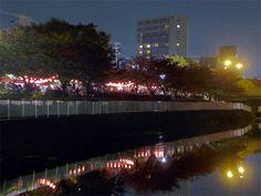 姫路の三左衛門堀に屋台村-水面に紅灯、一夜限りのにぎわい見せる(写真ニュース)