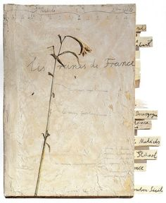 Anselm Kiefer - The Queens of France Anselm Kiefer, Collages, Collage Art, Bokashi, Artist Journal, Beautiful Book Covers, This Is A Book, Handmade Books, Handmade Notebook