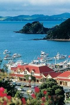 """Paihia, Northland, New Zealand. The centre of the wonderful """"Bay of Islands! A super, layed-back part of the world! Also famous for big game fishing! New Zealand North, New Zealand Travel, Auckland, Beautiful World, Beautiful Places, Beautiful Scenery, Tasmania, Places To Travel, Places To See"""