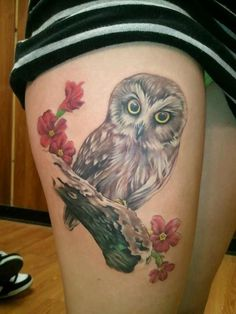 owl with pink blossoms