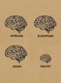 Brains by size and shape of the average African, European and Asian humans. With the racist brain thrown in for comparison.  #neurology #brains