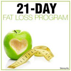 3 day week fat loss program
