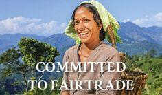 Darjeeling Jasmine Premium Green Suppliers Australia by Sereni Tea http://www.serenitea.com.au/