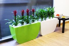 Green Linik Tall Planter looks great against the bright red Bromiliads.  See more options from @plantfinderpro at https://plantfinderpro.com/couture-planters/