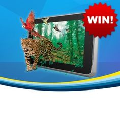 Win an Android Tablet!