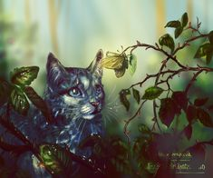 Mistystar's Omen - chapter 9. 1) by Ali-zarina on DeviantArt
