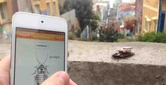 RoboRoach Lets You Control an Insect's Mind With an App http://www.beatechnocrat.com/2013/06/12/roboroach-lets-you-control-an-insects-mind-with-an-app/