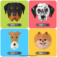 Free vector Breeds of dogs Dog Crafts, Animal Crafts, Animals And Pets, Cute Animals, Pet Hotel, Dog Quilts, Animal Masks, Cat Colors, Animal Birthday