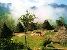 Wisata Wae Rebo 3 hari 2 malam Labuan, Komodo, Trekking, Golf Courses, Hiking