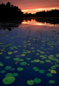 Compass Pond Sunset near Mt. Katahdin, Baxter State Park, Maine