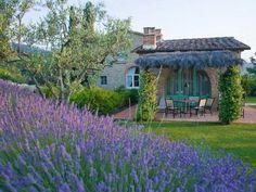 Tuscan Style, Pergola, Outdoor Structures, Cabin, House Styles, Garden, Home Decor, Prague, Lavender
