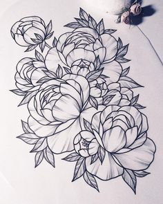 Tattoo of peony - linework, flora, flower, peony - addflash. Flower Tattoo Drawings, Flower Tattoo Back, Flower Tattoo Shoulder, Flower Tattoo Designs, Tattoo Sketches, Back Tattoo, Tattoo Flowers, Tattoo Roses, Butterfly Tattoos