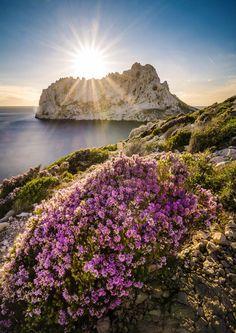 Calanque de Callelongue, Marseille, Provence-Alpes-Côte d'Azur