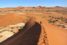Climbing the crest of Big Daddy a dune found  in Sossusvlei!    Photo Credit: Namibia Tourism Board