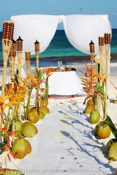 Coconuts decoration at a beach wedding