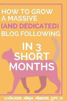How I Grew My Blog To Thousands in Only 3 Months. Are you ready to hustle? Blogging Tips | Blogging Resources | Non-Asshole Blogger Guide