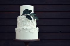 Elegant modern wedding cake with bas relief detailing and branch of large sugar leaves. Elegant Modern Wedding, Cake Shop, Custom Cakes, Wedding Cakes, Leaves, Sugar, Cookies, Country, Desserts
